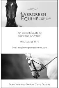 Evergreen Equine