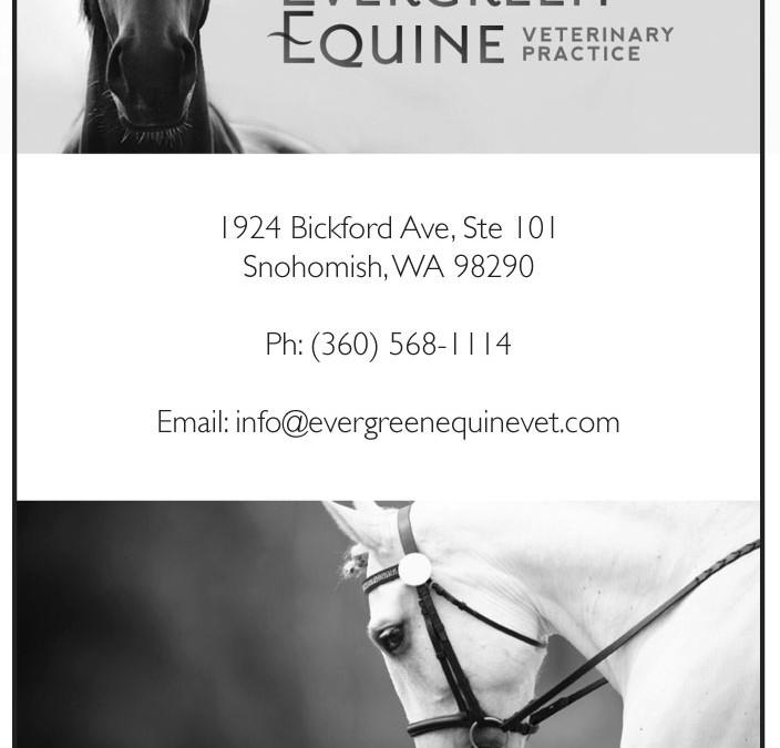 Evergreen Equine Vet